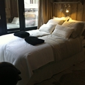 Bed and Breakfast Amsterdam (16)